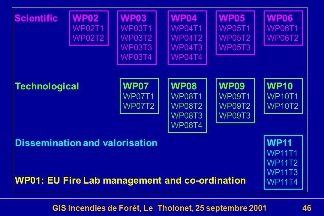 GIS Incendies de Forêt, Le Tholonet, 25 septembre 200146 WP02 WP02T1 WP02T2 WP07 WP07T1 WP07T2 WP03 WP03T1 WP03T2 WP03T3 WP03T4 WP04 WP04T1 WP04T2 WP04T3 WP04T4 WP08 WP08T1 WP08T2 WP08T3 WP08T4 WP05 WP05T1 WP05T2 WP05T3 WP09 WP09T1 WP09T2 WP09T3 WP06 WP06T1 WP06T2 WP11 WP11T1 WP11T2 WP11T3 WP11T4 WP10 WP10T1 WP10T2 Scientific Technological Dissemination and valorisation WP01: EU Fire Lab management and co-ordination
