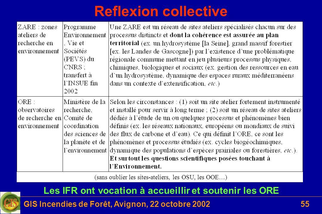 GIS Incendies de Forêt, Avignon, 22 octobre 200255 Reflexion collective Les IFR ont vocation à accueillir et soutenir les ORE (sans oublier les sites-