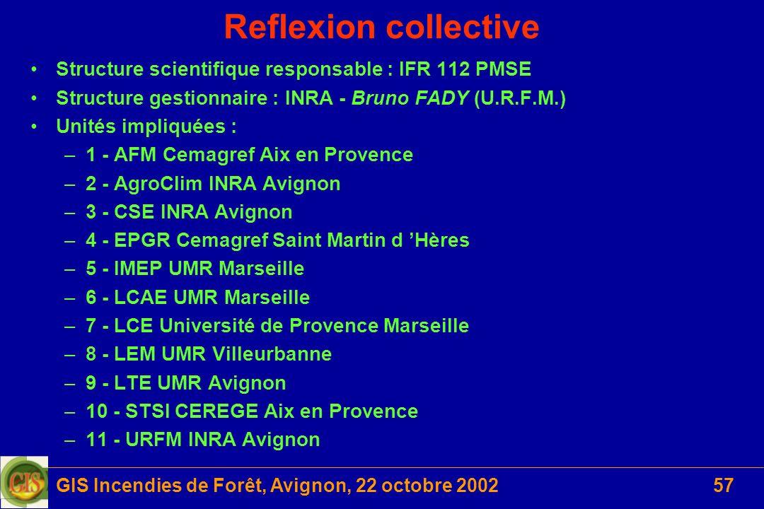 GIS Incendies de Forêt, Avignon, 22 octobre 200257 Reflexion collective Structure scientifique responsable : IFR 112 PMSE Structure gestionnaire : INR