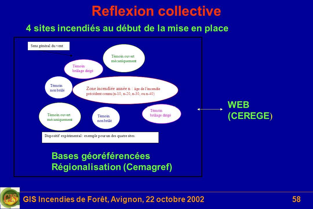 GIS Incendies de Forêt, Avignon, 22 octobre 200258 Reflexion collective Zone incendiée année n : âge de lincendie précédent connu (n-10, n-20, n-30, o
