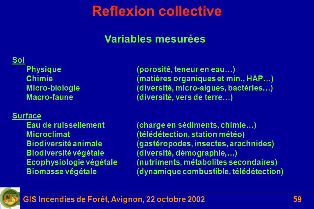 GIS Incendies de Forêt, Avignon, 22 octobre 200259 Reflexion collective Variables mesurées Sol Physique(porosité, teneur en eau…) Chimie(matières orga