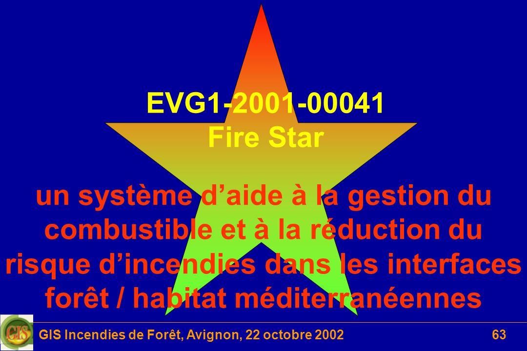 GIS Incendies de Forêt, Avignon, 22 octobre 200263 EVG1-2001-00041 Fire Star un système daide à la gestion du combustible et à la réduction du risque