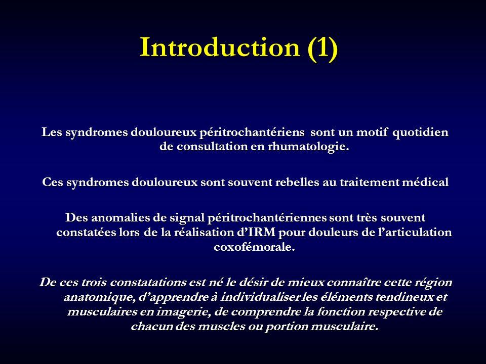 Introduction (2) Cet exposé est le fruit de nos observations au quotidien de cette région péritrochantérienne en IRM et au scanner puis en échographie … des corrélations radio-cliniques : M.Lequesne, H.Bard et M Samson ….