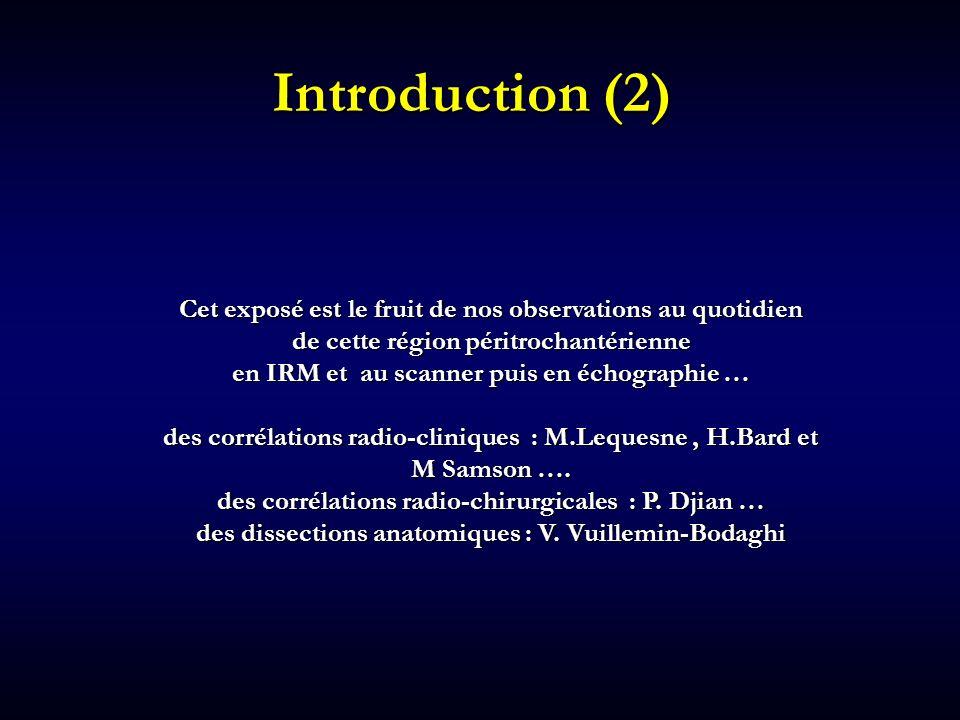 Introduction (2) Cet exposé est le fruit de nos observations au quotidien de cette région péritrochantérienne en IRM et au scanner puis en échographie