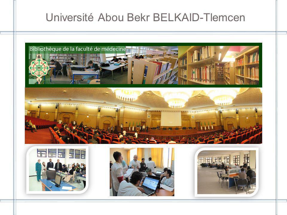 2 Votre bibliothèque est reliée à : [Intranet de létablissement] Résultats de létude de l état de l accès à l IST dans les universités partenaires en Algérie