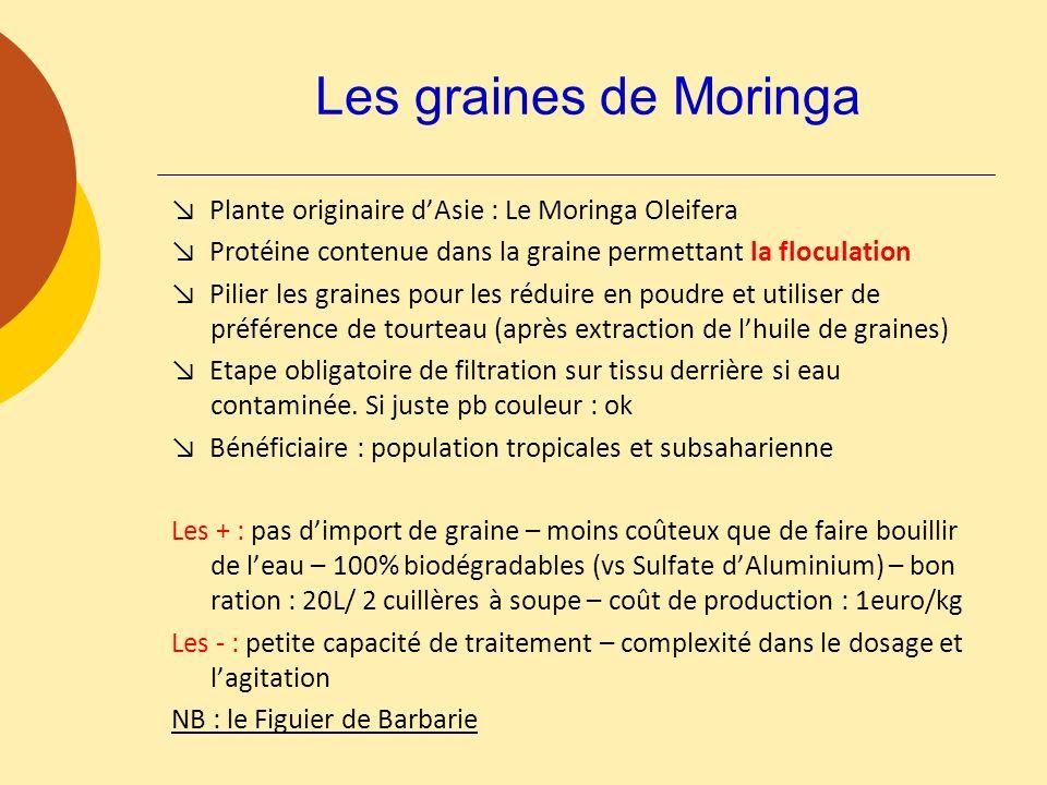 Les graines de Moringa Plante originaire dAsie : Le Moringa Oleifera Protéine contenue dans la graine permettant la floculation Pilier les graines pou