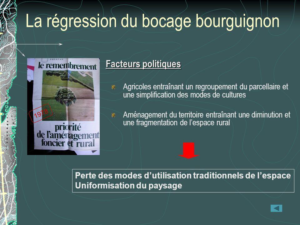 1978 La régression du bocage bourguignon Facteurs politiques Agricoles entraînant un regroupement du parcellaire et une simplification des modes de cu