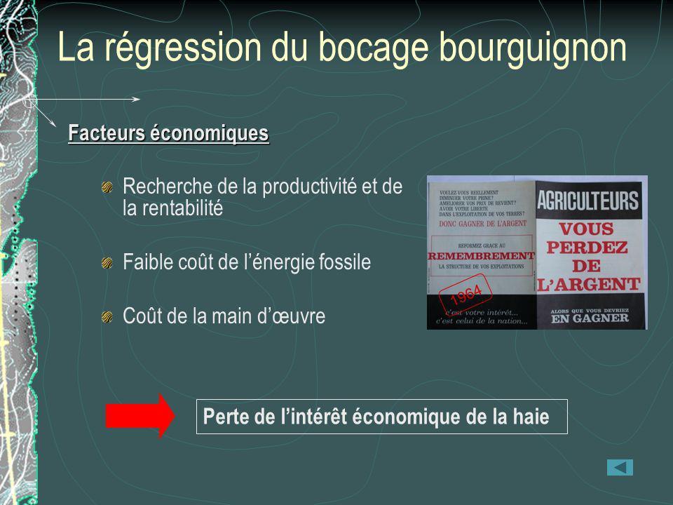 La régression du bocage bourguignon Facteurs économiques Recherche de la productivité et de la rentabilité Faible coût de lénergie fossile Coût de la