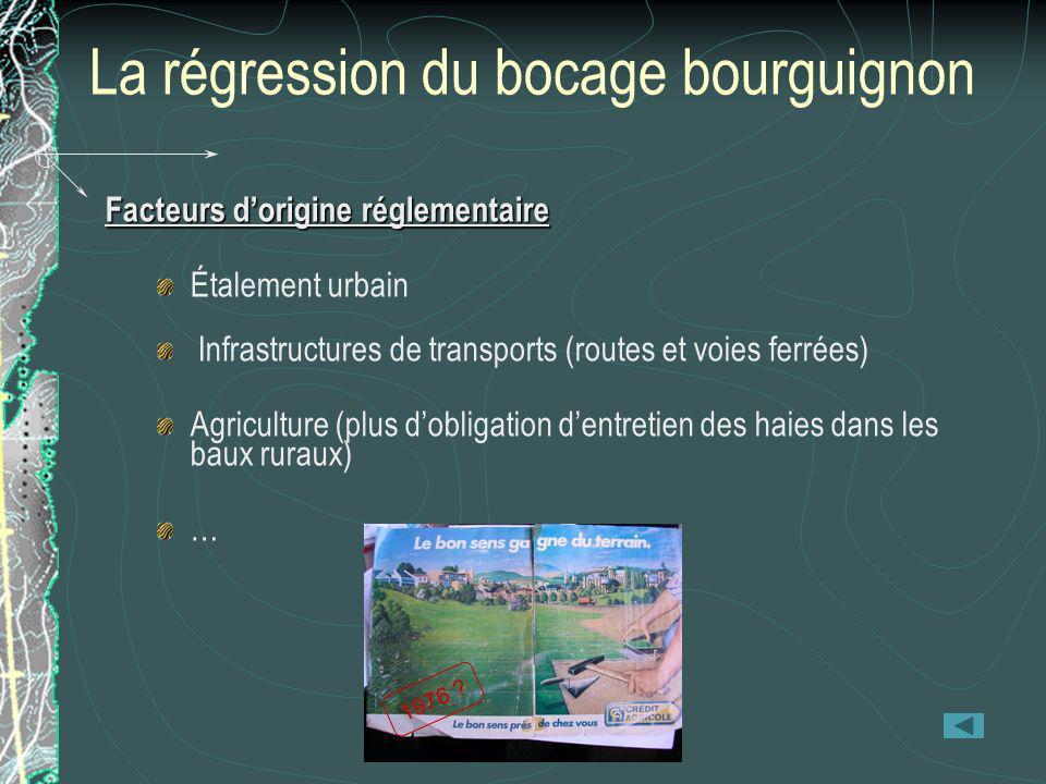 La régression du bocage bourguignon Facteurs dorigine réglementaire Étalement urbain Infrastructures de transports (routes et voies ferrées) Agricultu