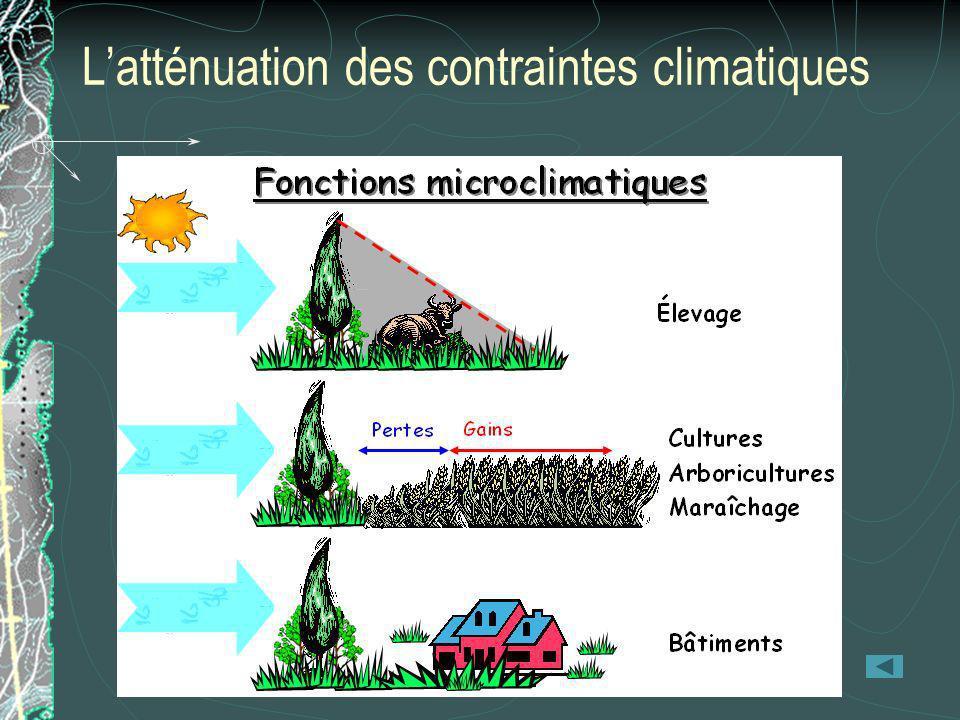 Latténuation des contraintes climatiques