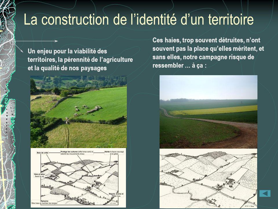 La construction de lidentité dun territoire Un enjeu pour la viabilité des territoires, la pérennité de lagriculture et la qualité de nos paysages Ces