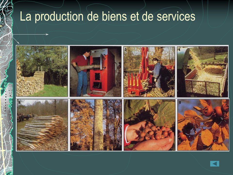 La production de biens et de services