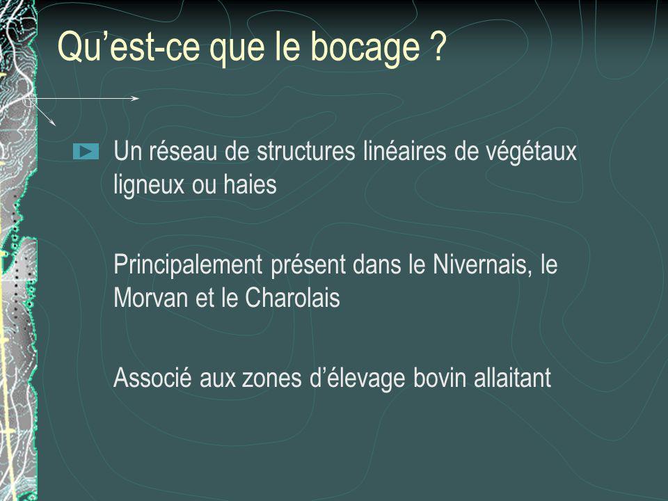 Quest-ce que le bocage ? Un réseau de structures linéaires de végétaux ligneux ou haies Principalement présent dans le Nivernais, le Morvan et le Char
