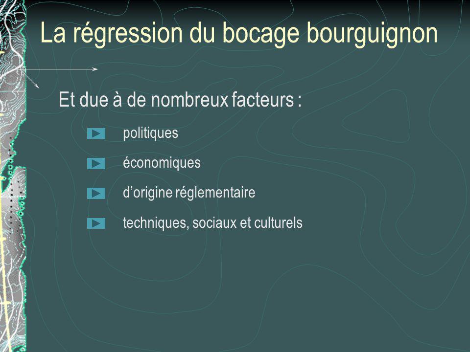 La régression du bocage bourguignon Et due à de nombreux facteurs : politiques économiques dorigine réglementaire techniques, sociaux et culturels