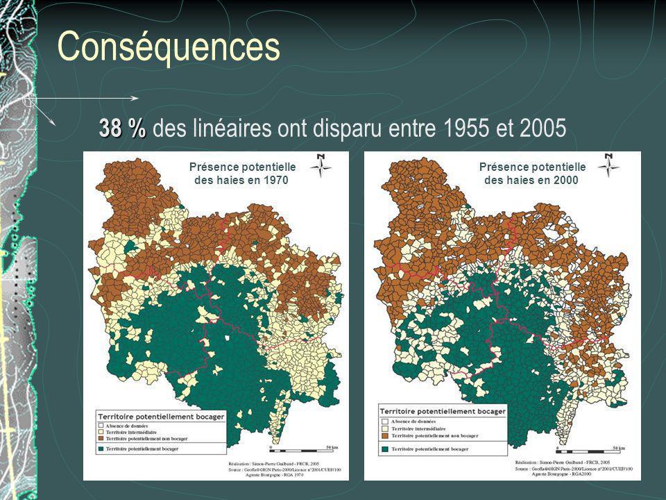 Conséquences 38 % 38 % des linéaires ont disparu entre 1955 et 2005 Présence potentielle des haies en 1970 Présence potentielle des haies en 2000