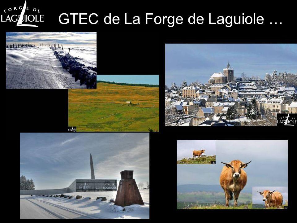 Projet Territoire et Compétences Pourquoi la Forge a collaboré .