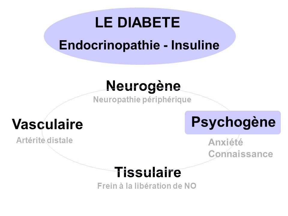 Endocrinopathie - Insuline Neurogène Vasculaire Tissulaire Psychogène Neuropathie périphérique Artérite distale Frein à la libération de NO Anxiété Connaissance LE DIABETE