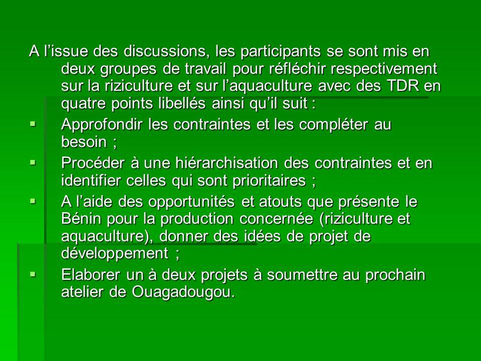 A lissue des discussions, les participants se sont mis en deux groupes de travail pour réfléchir respectivement sur la riziculture et sur laquaculture