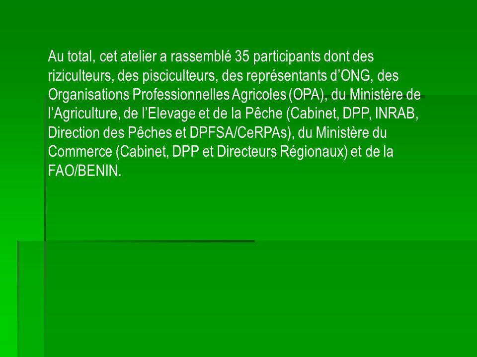Au total, cet atelier a rassemblé 35 participants dont des riziculteurs, des pisciculteurs, des représentants dONG, des Organisations Professionnelles Agricoles (OPA), du Ministère de lAgriculture, de lElevage et de la Pêche (Cabinet, DPP, INRAB, Direction des Pêches et DPFSA/CeRPAs), du Ministère du Commerce (Cabinet, DPP et Directeurs Régionaux) et de la FAO/BENIN.