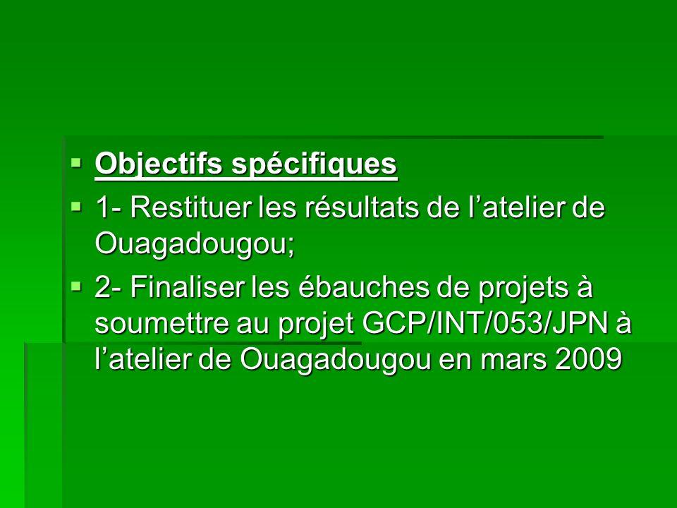Objectifs spécifiques Objectifs spécifiques 1- Restituer les résultats de latelier de Ouagadougou; 1- Restituer les résultats de latelier de Ouagadougou; 2- Finaliser les ébauches de projets à soumettre au projet GCP/INT/053/JPN à latelier de Ouagadougou en mars 2009 2- Finaliser les ébauches de projets à soumettre au projet GCP/INT/053/JPN à latelier de Ouagadougou en mars 2009