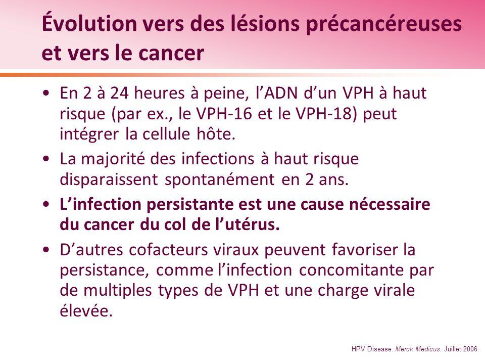 Évolution vers des lésions précancéreuses et vers le cancer En 2 à 24 heures à peine, lADN dun VPH à haut risque (par ex., le VPH-16 et le VPH-18) peu