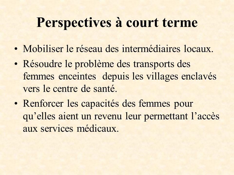 Perspectives à court terme Mobiliser le réseau des intermédiaires locaux. Résoudre le problème des transports des femmes enceintes depuis les villages