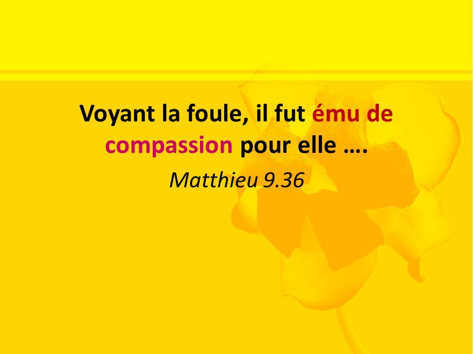 Voyant la foule, il fut ému de compassion pour elle …. Matthieu 9.36