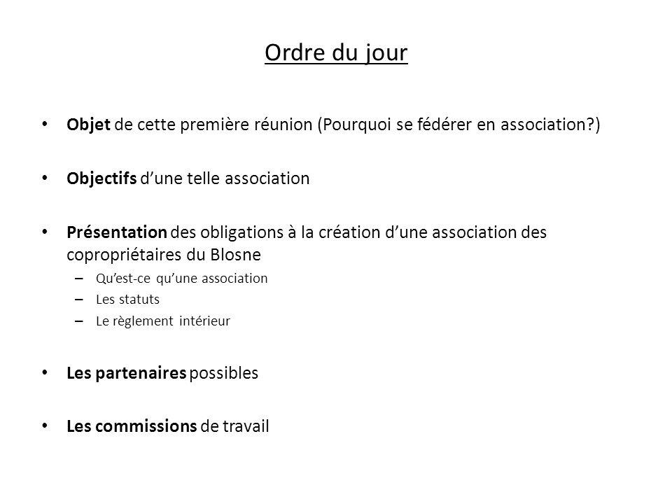 Ordre du jour Objet de cette première réunion (Pourquoi se fédérer en association?) Objectifs dune telle association Présentation des obligations à la