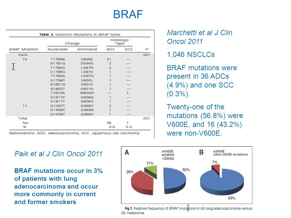 Marchetti et al J Clin Oncol 2011 1,046 NSCLCs BRAF mutations were present in 36 ADCs (4.9%) and one SCC (0.3%). Twenty-one of the mutations (56.8%) w
