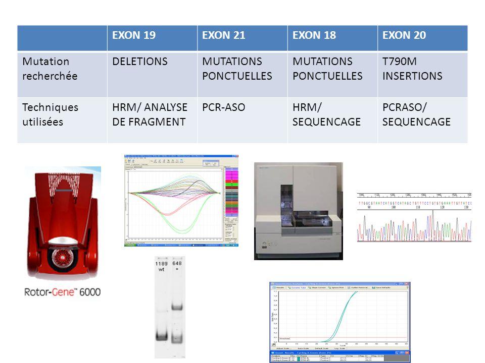EXON 19EXON 21EXON 18EXON 20 Mutation recherchée DELETIONSMUTATIONS PONCTUELLES MUTATIONS PONCTUELLES T790M INSERTIONS Techniques utilisées HRM/ ANALY