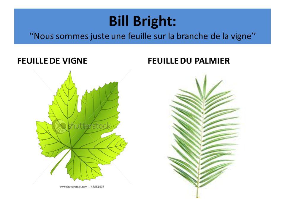 Bill Bright: Nous sommes juste une feuille sur la branche de la vigne FEUILLE DE VIGNEFEUILLE DU PALMIER