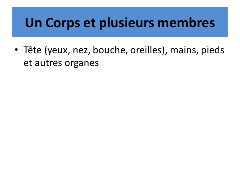 Un Corps et plusieurs membres Tête (yeux, nez, bouche, oreilles), mains, pieds et autres organes