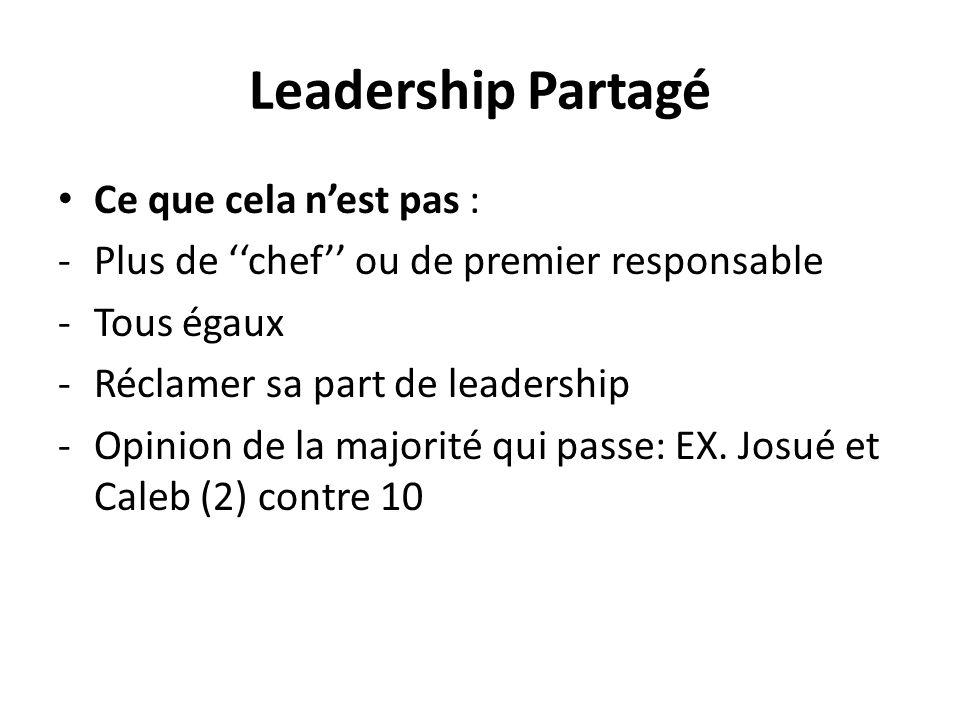 Leadership Partagé Ce que cela nest pas : -Plus de chef ou de premier responsable -Tous égaux -Réclamer sa part de leadership -Opinion de la majorité