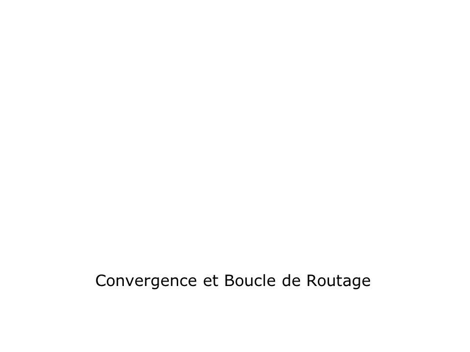 Convergence et Boucle de Routage