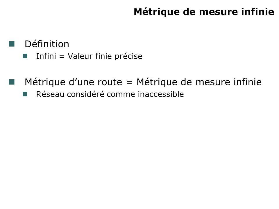 Métrique de mesure infinie Définition Infini = Valeur finie précise Métrique dune route = Métrique de mesure infinie Réseau considéré comme inaccessib