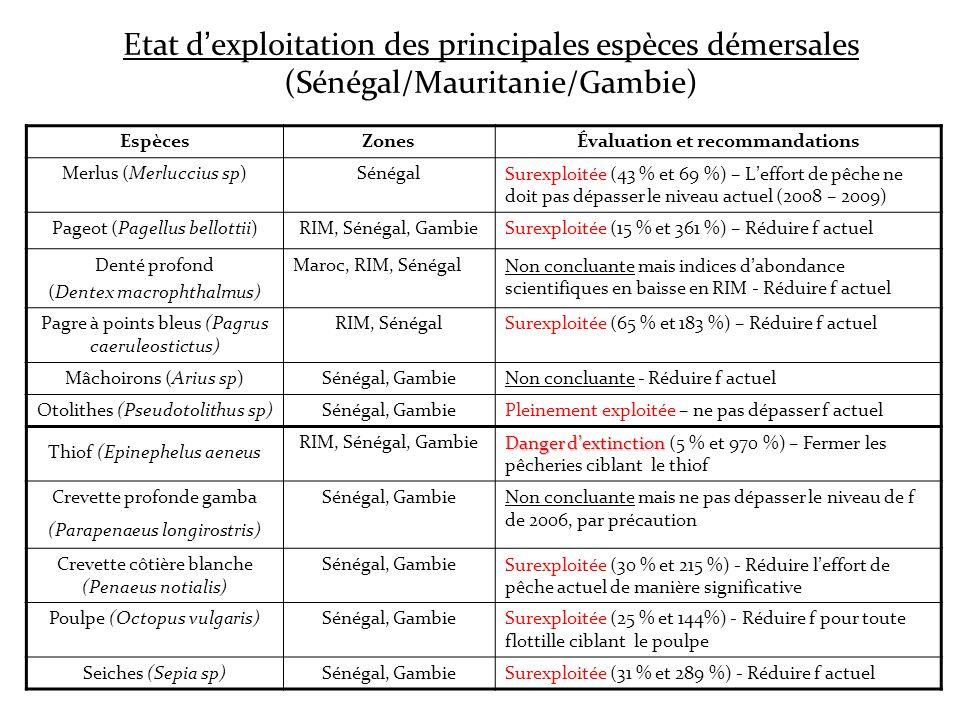 Etat dexploitation des principales espèces démersales (Sénégal/Mauritanie/Gambie) EspècesZonesÉvaluation et recommandations Merlus (Merluccius sp)Séné