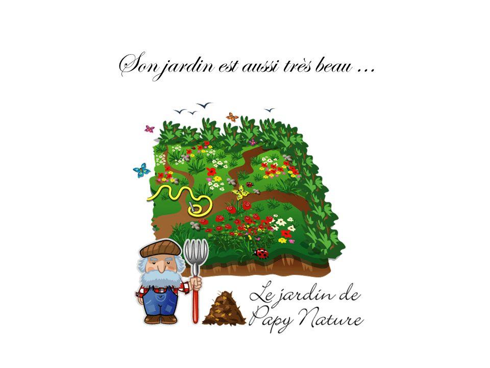 Mon Papy Nature aime beaucoup travailler dans son jardin Il ramasse les feuilles pour faire du compost et nourrir ses fleurs Il observe les insectes et les oiseaux qui habitent dans son jardin…