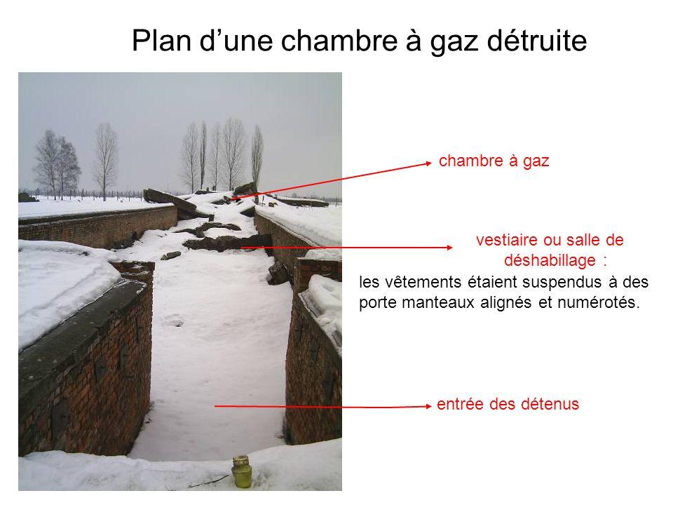 entrée des détenus Plan dune chambre à gaz détruite vestiaire ou salle de déshabillage : les vêtements étaient suspendus à des porte manteaux alignés