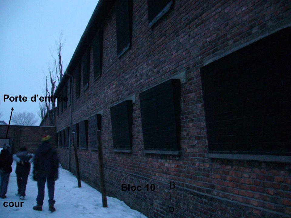 Bloc Bloc Bloc 10 cour Porte dentrée