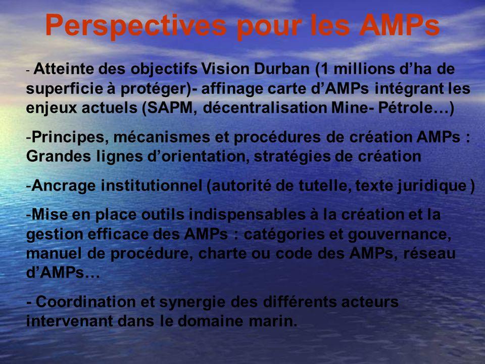 Perspectives pour les AMPs - Atteinte des objectifs Vision Durban (1 millions dha de superficie à protéger)- affinage carte dAMPs intégrant les enjeux