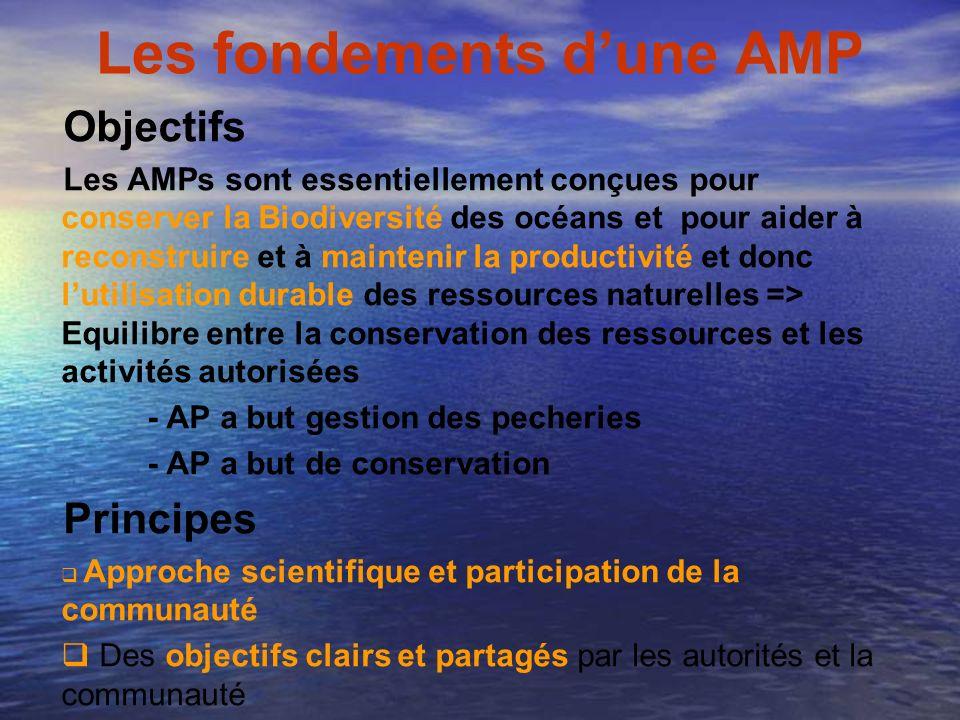Les fondements dune AMP Objectifs Les AMPs sont essentiellement conçues pour conserver la Biodiversité des océans et pour aider à reconstruire et à ma