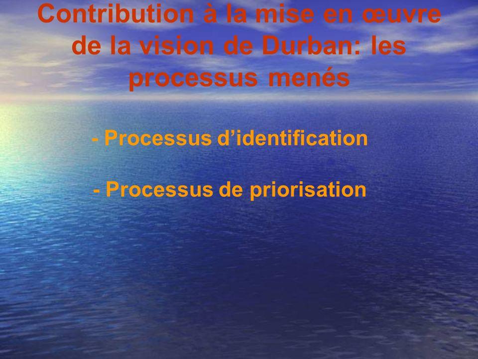 Contribution à la mise en œuvre de la vision de Durban: les processus menés - Processus didentification - Processus de priorisation