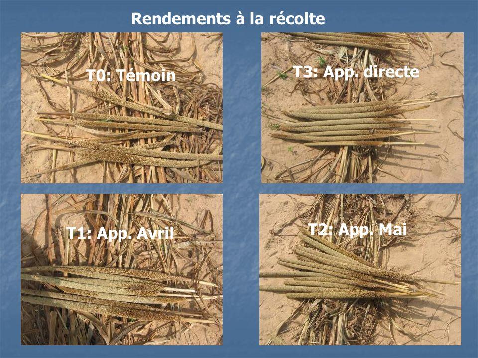 Rendements à la récolte T0: Témoin T1: App. Avril T2: App. Mai T3: App. directe