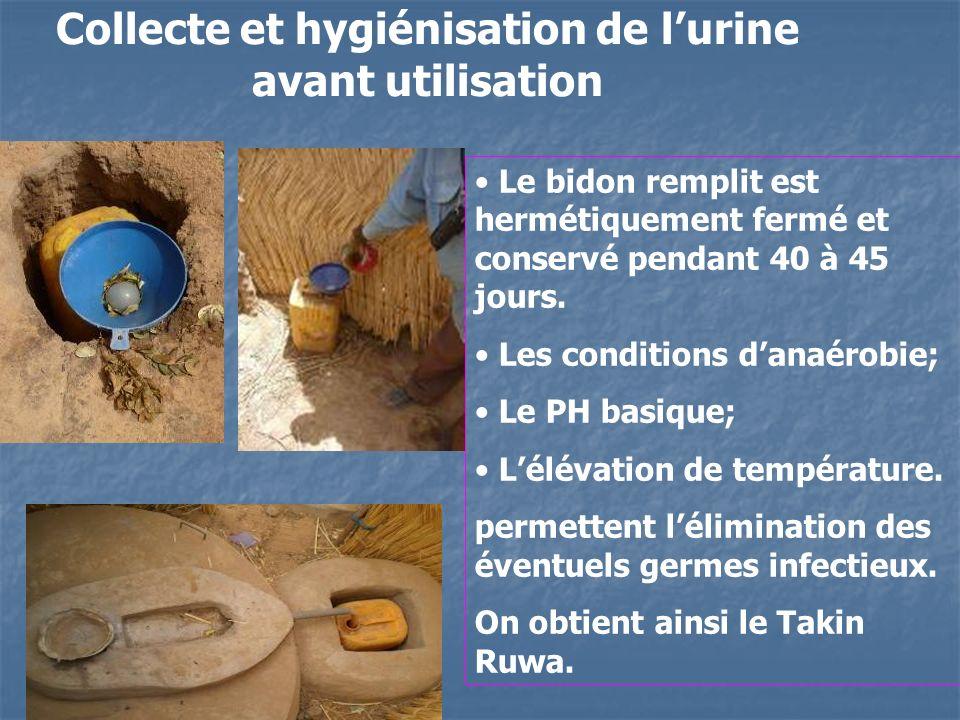 Collecte et hygiénisation de lurine avant utilisation Le bidon remplit est hermétiquement fermé et conservé pendant 40 à 45 jours. Les conditions dana