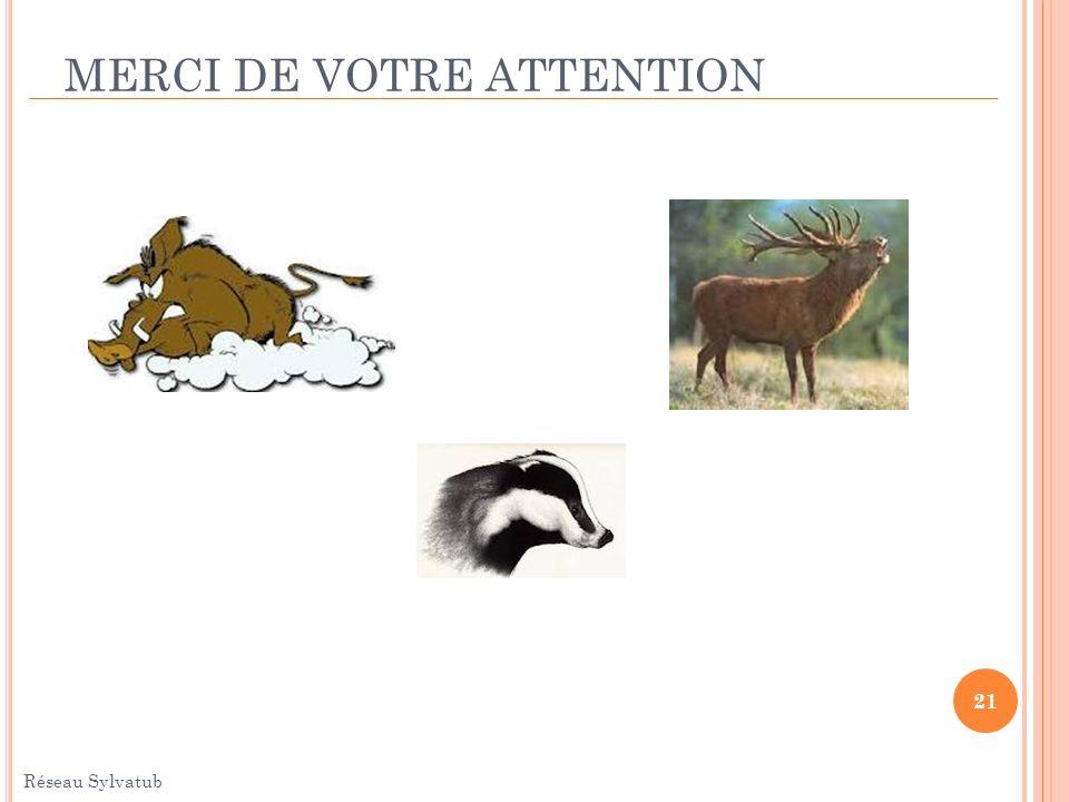 MERCI DE VOTRE ATTENTION 21 Réseau Sylvatub