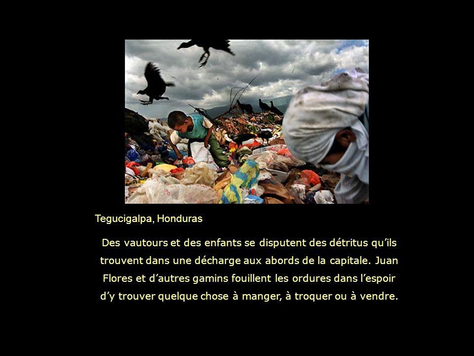 Tegucigalpa, Honduras Des vautours et des enfants se disputent des détritus quils trouvent dans une décharge aux abords de la capitale.