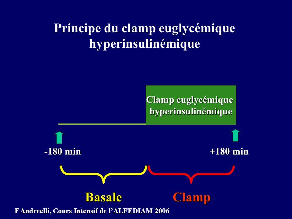 Clamp euglycémique hyperinsulinémique Perfusion d insuline à débit constant pour induire un Perfusion d insuline à débit constant pour induire un Hyperinsulinisme (7 UI/h, 75 mUI/m2/min) insulinémie de 60 pmol/l 1000 pmol/l Perfusion obligatoire de glucose sinon hypoglycémie chez le sujet témoin Perfusion obligatoire de glucose sinon hypoglycémie chez le sujet témoin F Andreelli, Cours Intensif de lALFEDIAM 2006