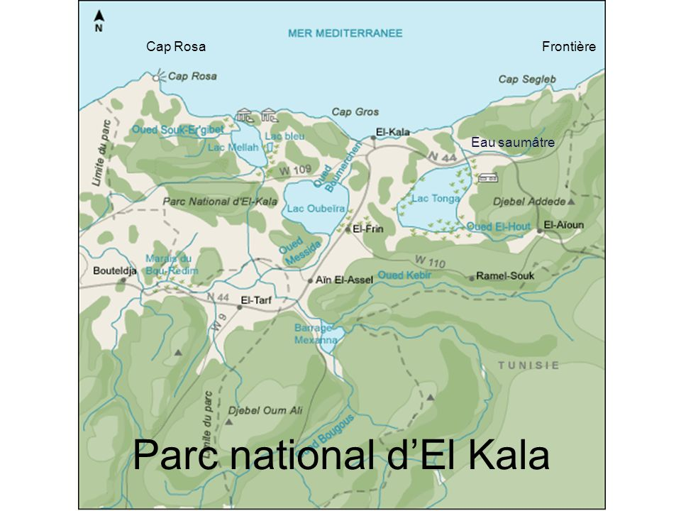 FrontièreCap Rosa Eau saumâtre Parc national dEl Kala