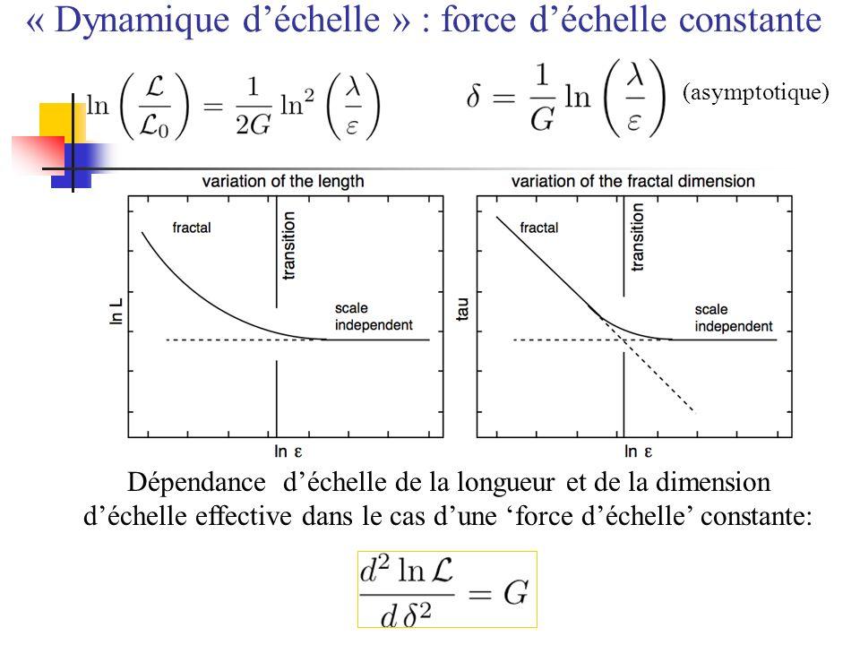 (asymptotique) Dépendance déchelle de la longueur et de la dimension déchelle effective dans le cas dune force déchelle constante: « Dynamique déchell