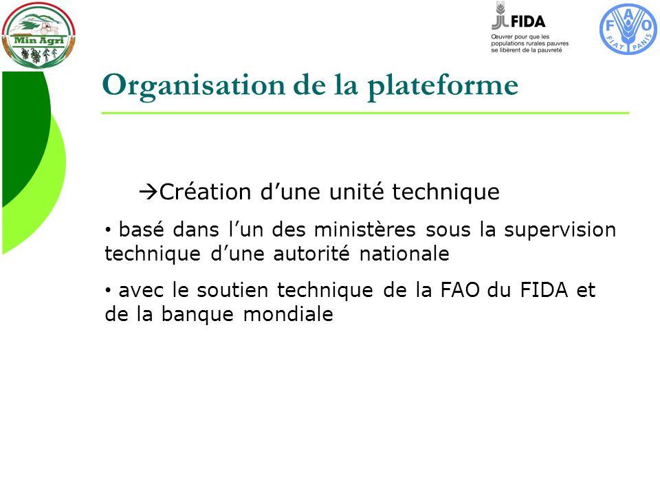 Organisation de la plateforme Création dune unité technique basé dans lun des ministères sous la supervision technique dune autorité nationale avec le soutien technique de la FAO du FIDA et de la banque mondiale
